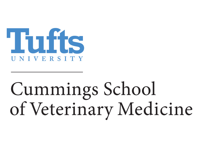 Image for Tufts Cummings School of Veterinary Medicine to Host 31st Commencement